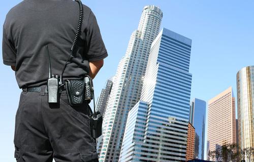 Hệ thống an ninh và cảnh sát bảo vệ